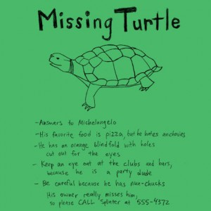 How to start a tshirt company- missing turtle