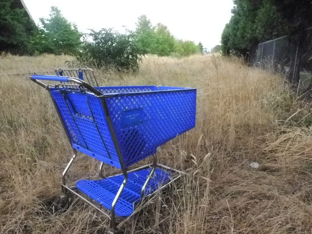 Abandon Shopping Cart